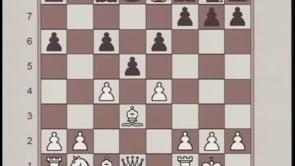susan polgar chess tactics